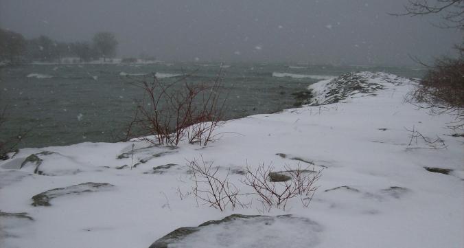 winter is coming n.p,ryan(c)